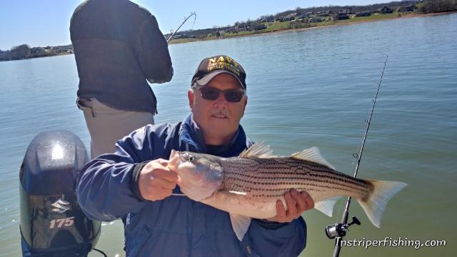 Norris lake | Jay's Striper Guide Service | Jay's Striper